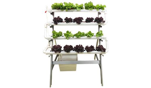 40棵菜金属种植架