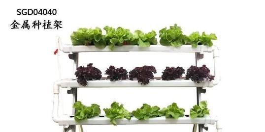 pvc立体种植架,让阳台简单种菜!