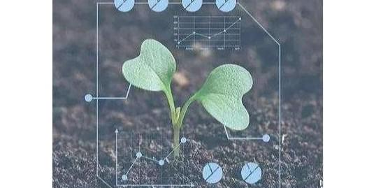 农业生物技术3大应用,你知道几个?