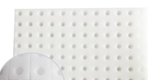 海绵育苗的优点,你都知道哪些?