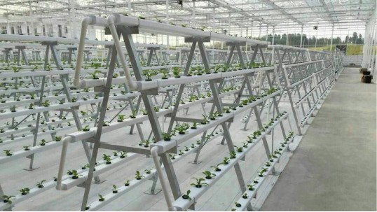 立体无土栽培设备,让1亩地变3亩用的秘密原来是它!