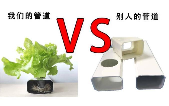 图片:南通荣成农业 水培蔬菜的管道