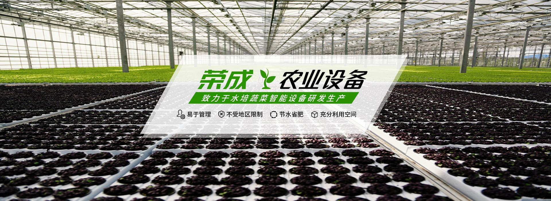 荣成农业公司-专业水培管道设备供应商