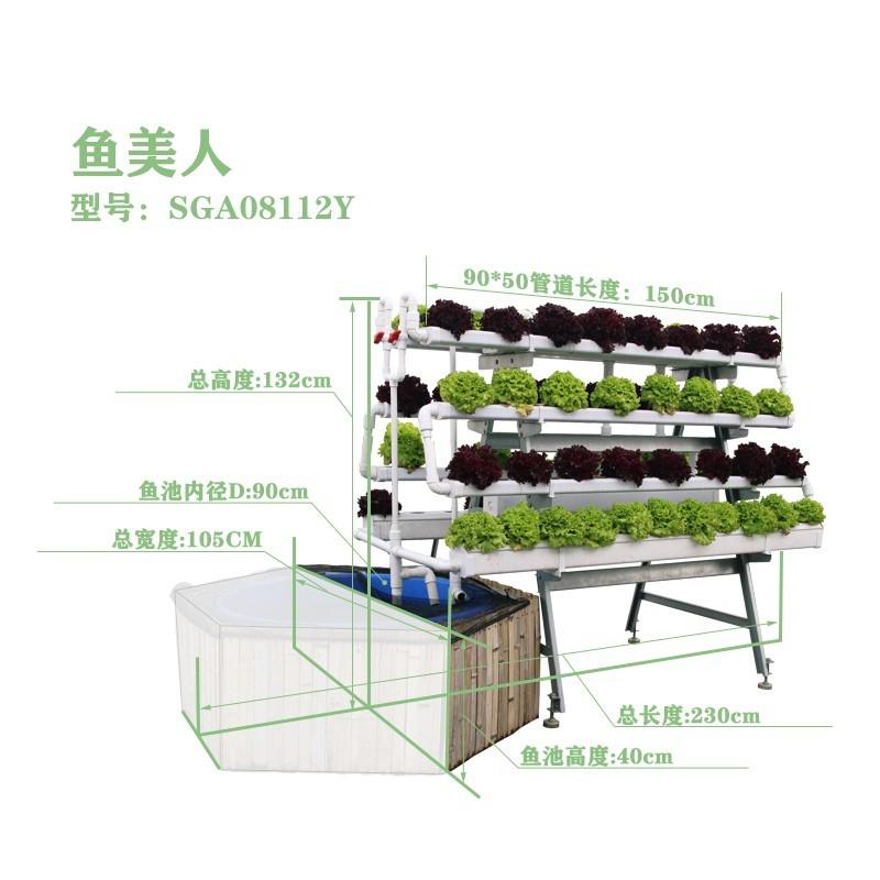 鱼美人-立体鱼菜共生水培种植架