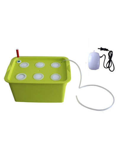 6孔水培种植箱