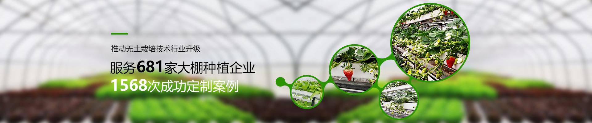 荣成农业-推动无土栽培技术行业升级