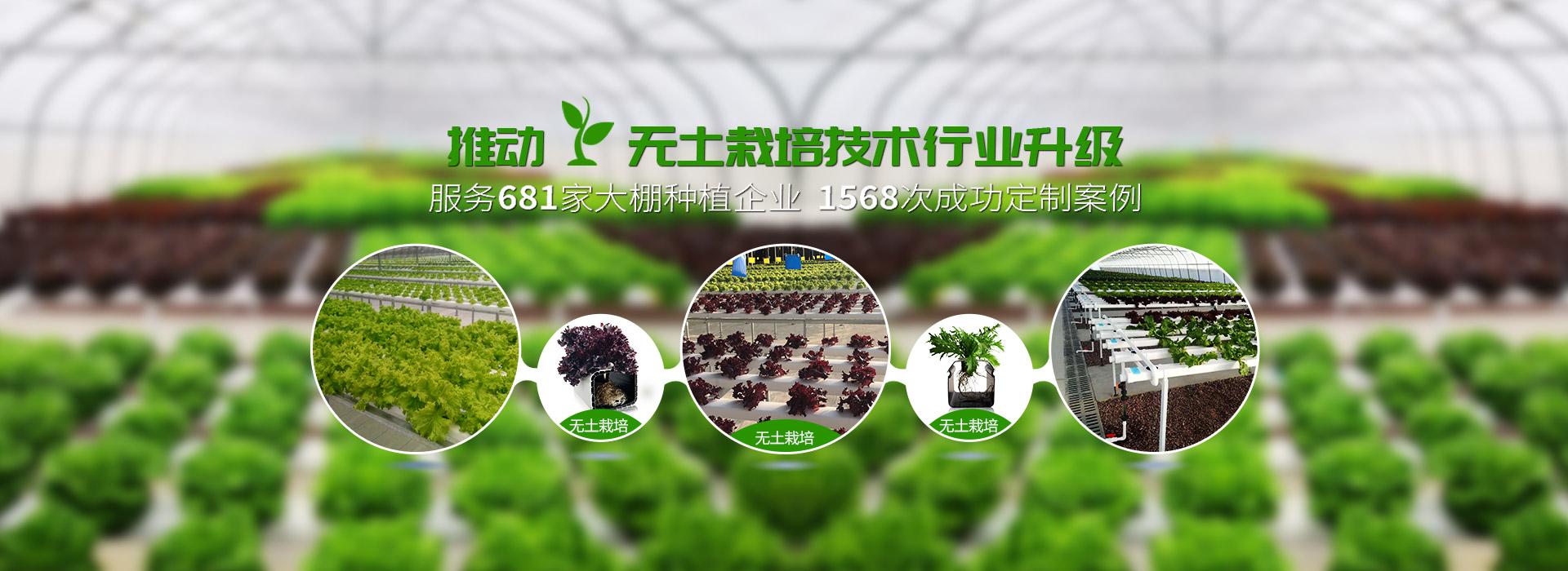荣成农业设备-推动无土栽培技术行业升级