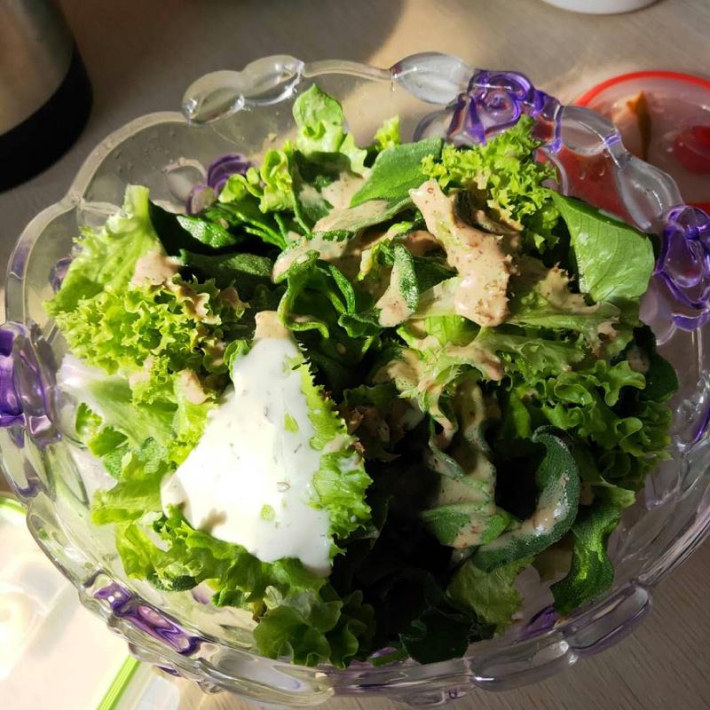 水培生菜 蔬菜沙拉