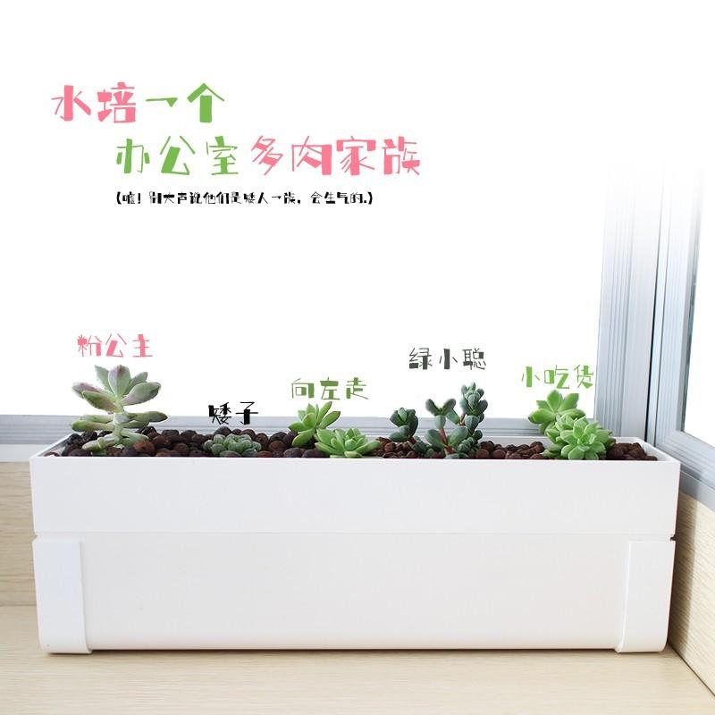 绿洲—水培种植槽