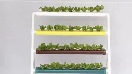 立体无土栽培设备,疫情期间在家也可以种菜!