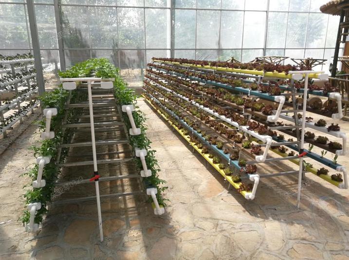 荣成农业 蔬乐管管道客户案例