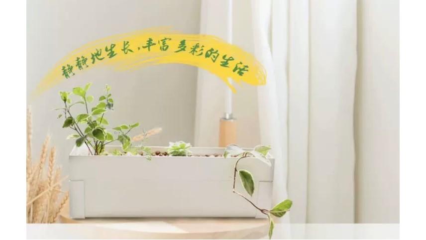 520的神秘大礼:无土栽培种植设备,把爱带回家!