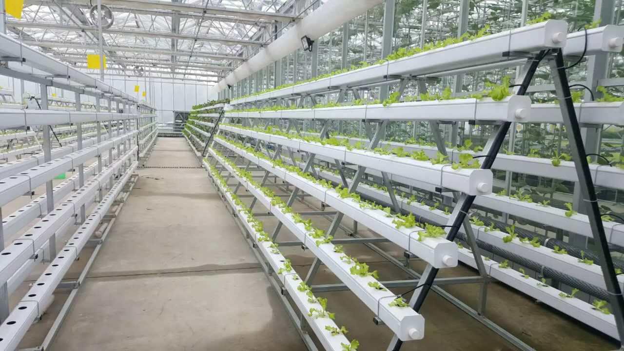 无土栽培种植槽哪种好?还不赶快收藏!
