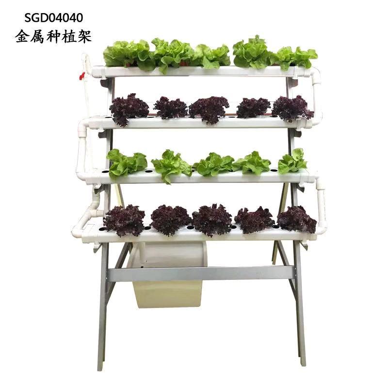 图:江苏荣诚农业 40棵菜金属种植架