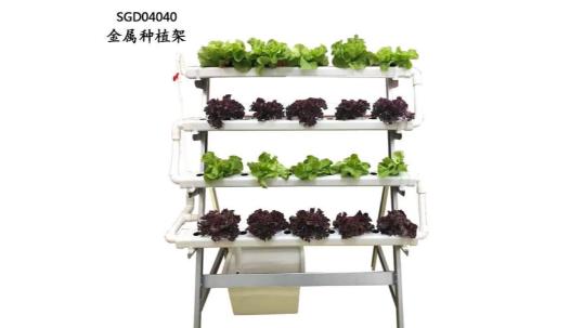 这样的阳台立体种植蔬菜架,你值得拥有哟!