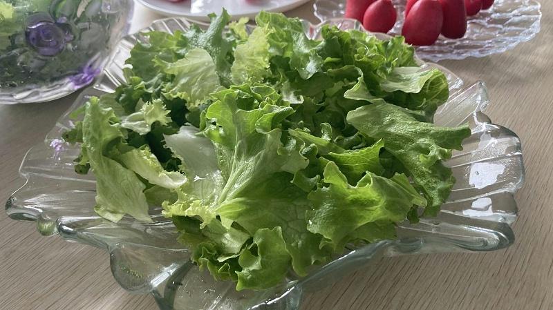 图:蔬乐管 水培蔬菜沙拉
