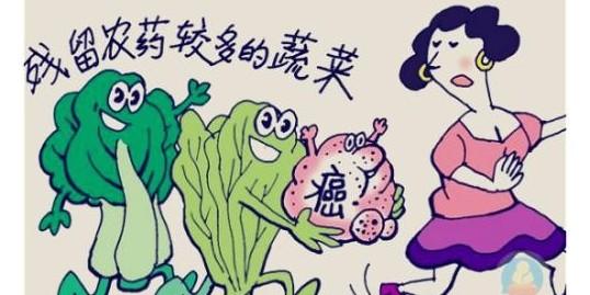 你们吃的蔬菜健康吗?