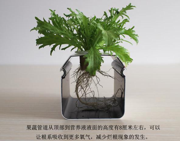 图:南通荣成农业 蔬乐管水培管道