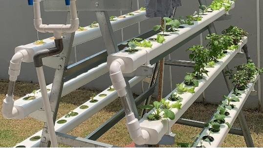 立体无土栽培设备,让你轻松在家种菜!