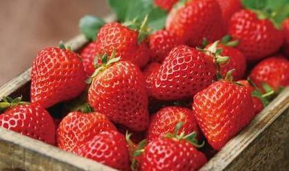 草莓 图片来源于网络