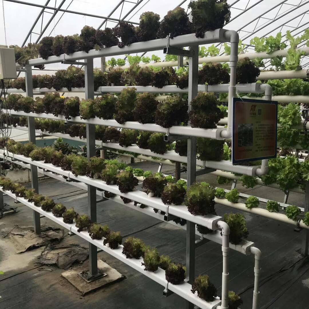 """现代农业种植槽 ,都在用""""蔬乐管""""!"""